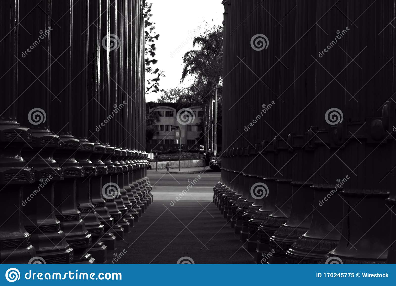 1 143 Greyscale Art Photos Free Royalty Free Stock Photos From Dreamstime