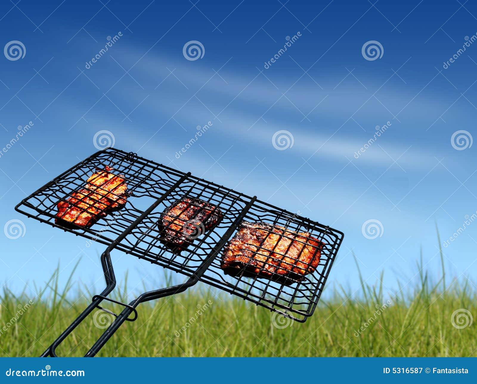 Download Griglia immagine stock. Immagine di griglia, carne, fuoco - 5316587