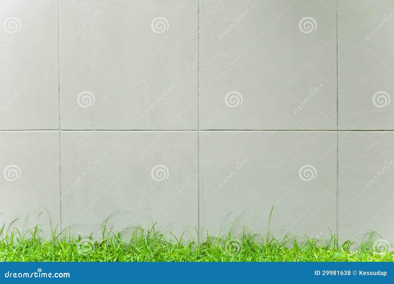 Grijze muur met groen gras royalty vrije stock foto 39 s beeld 29981638 for Grijze muur