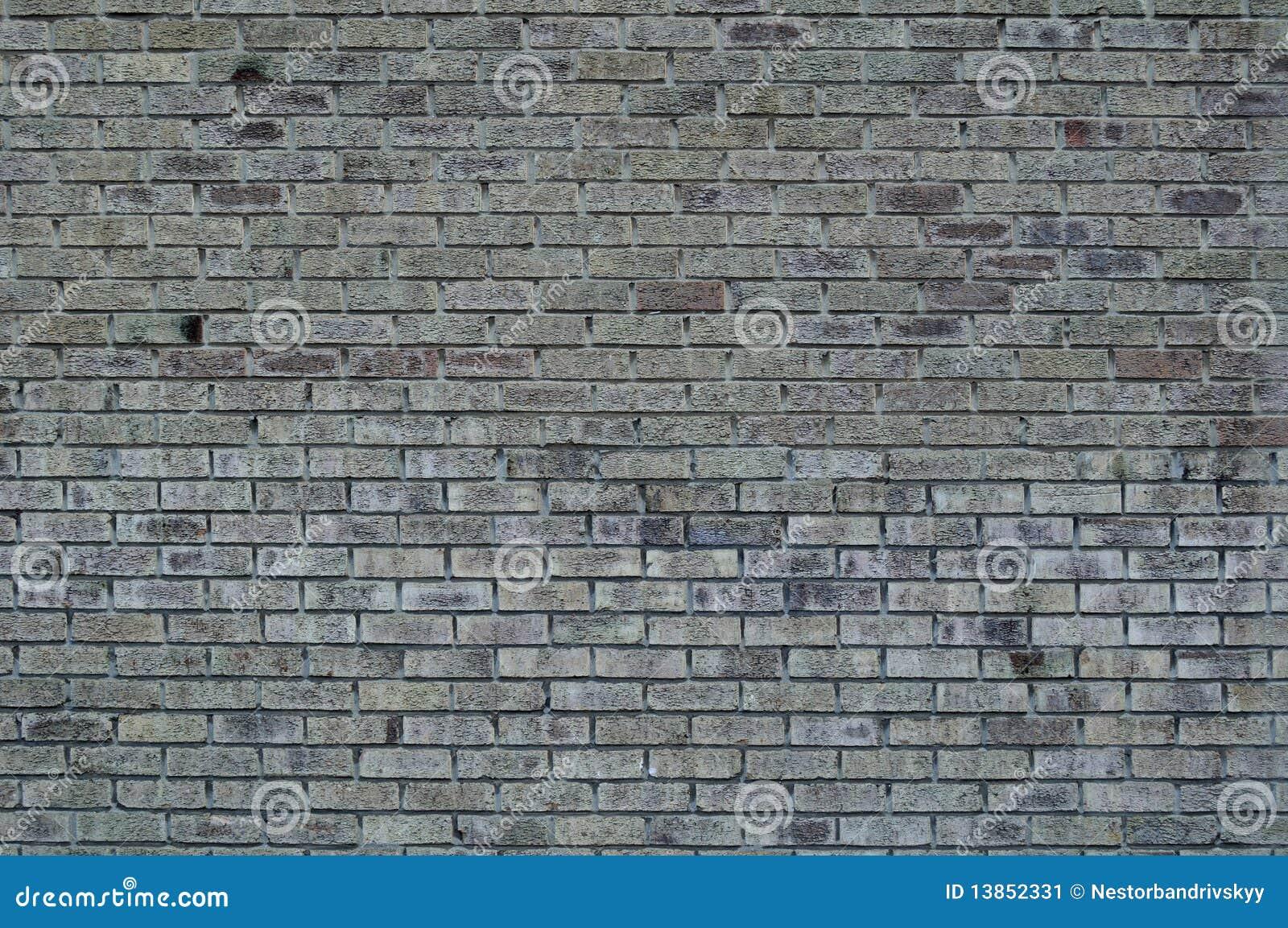 Grijze muur van bakstenen stock afbeelding beeld 13852331 for Grijze muur