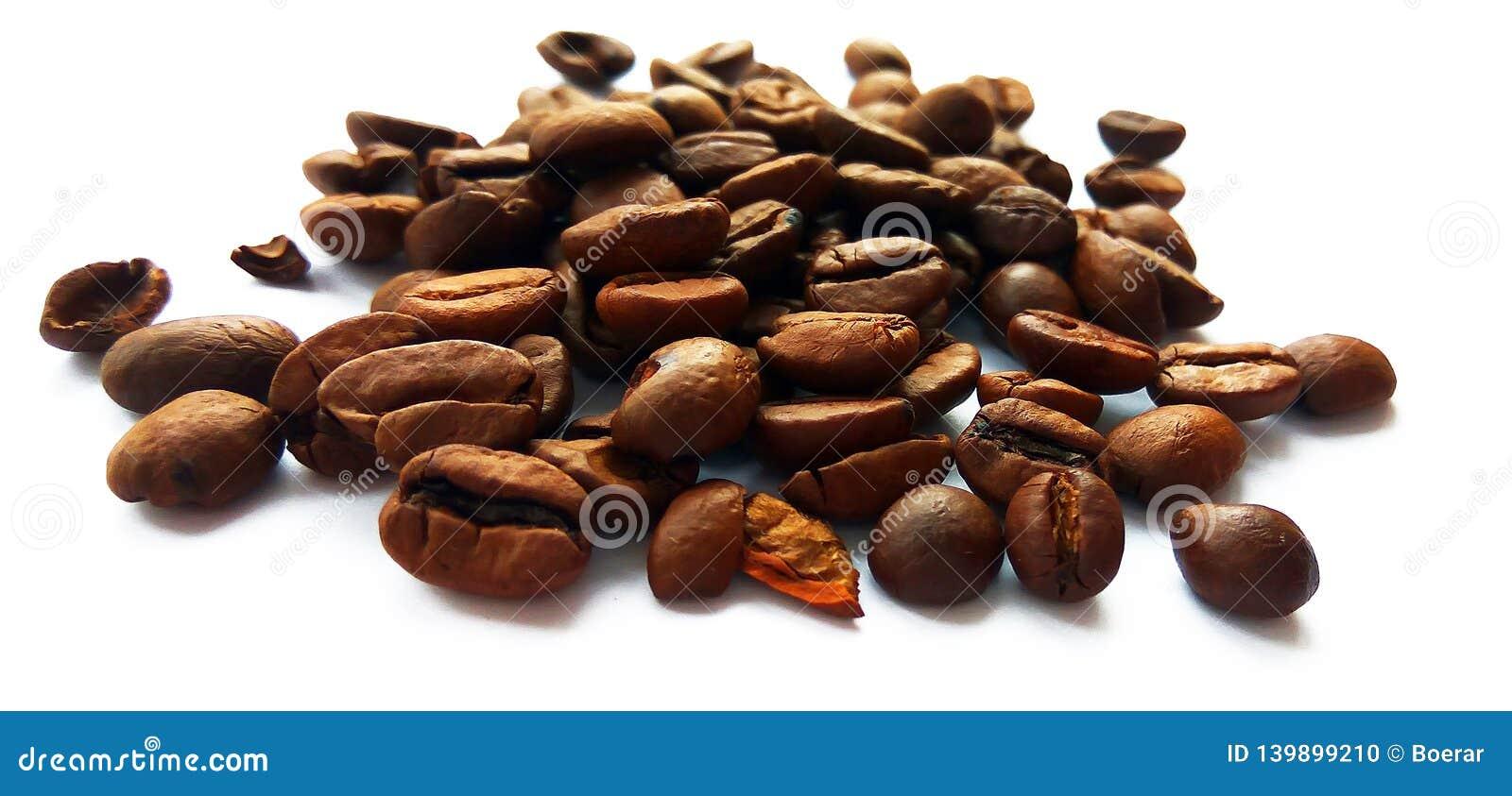 Grillade brunt isolerade kaffebönor och frö