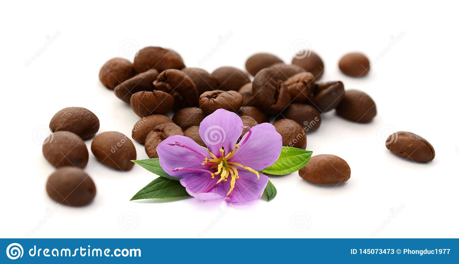 Grillade brunt isolerade kaffeb?nor och fr?