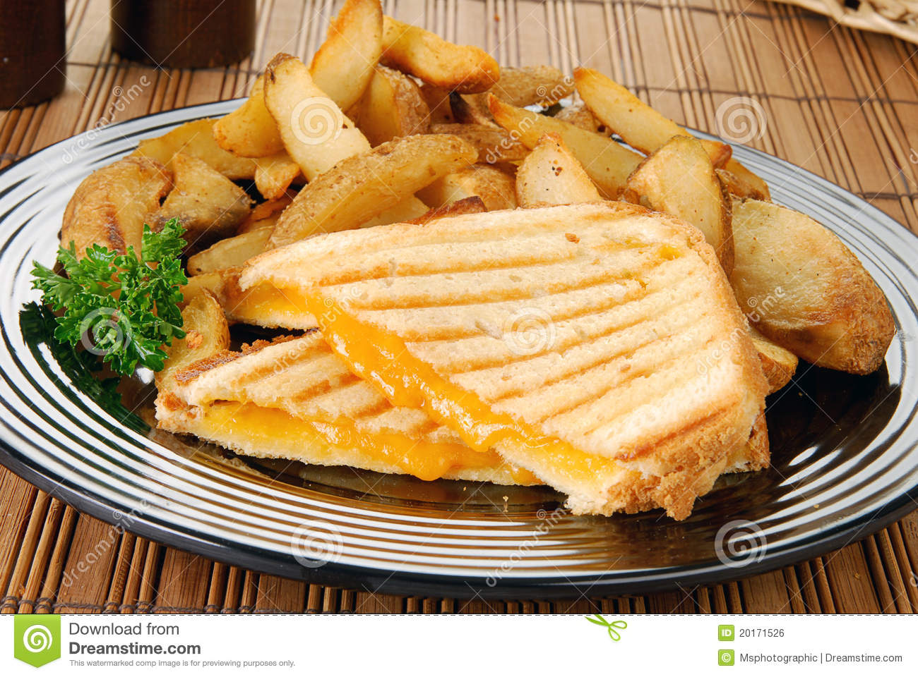 Grilled cheese sandwich and  Gourmet Grilled Cheese And Fries
