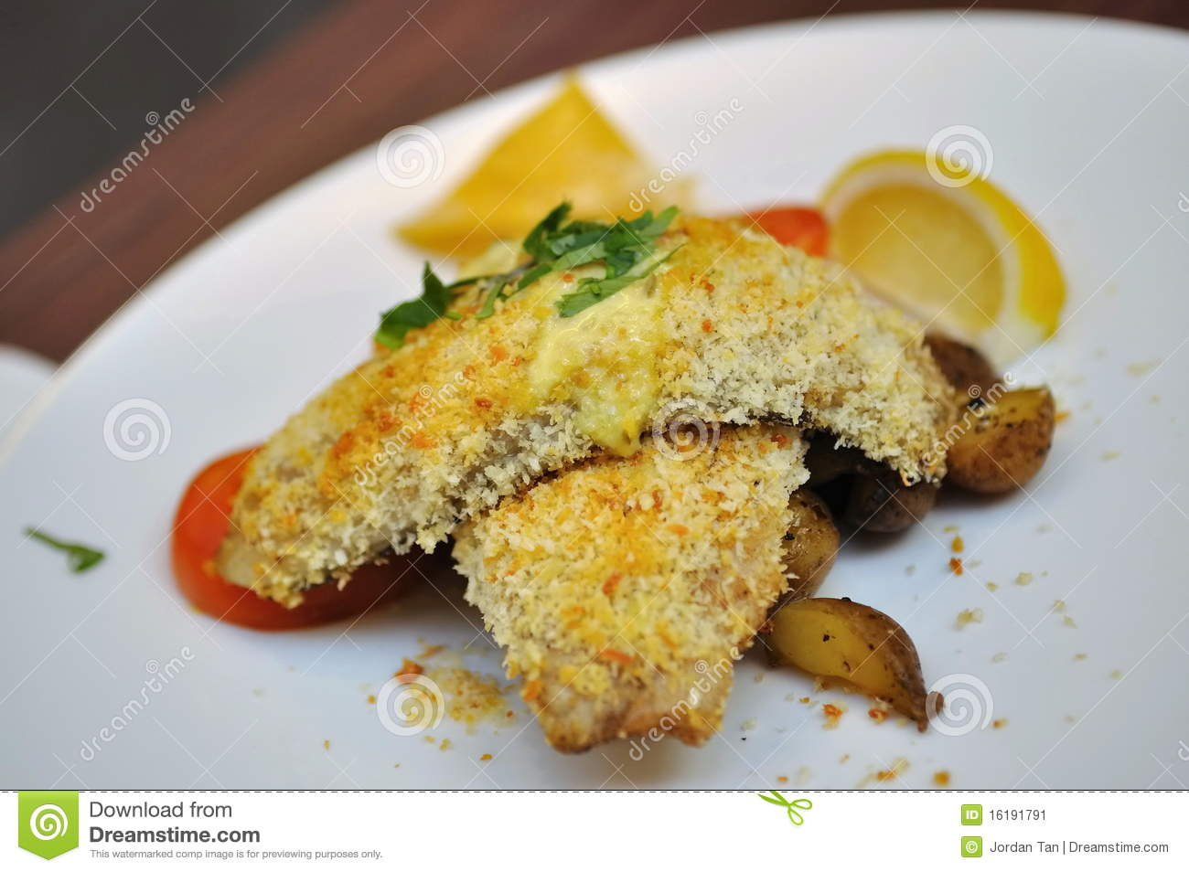 Grilled fish with bread crumbs stock image image 16191791 for Fried fish with bread crumbs