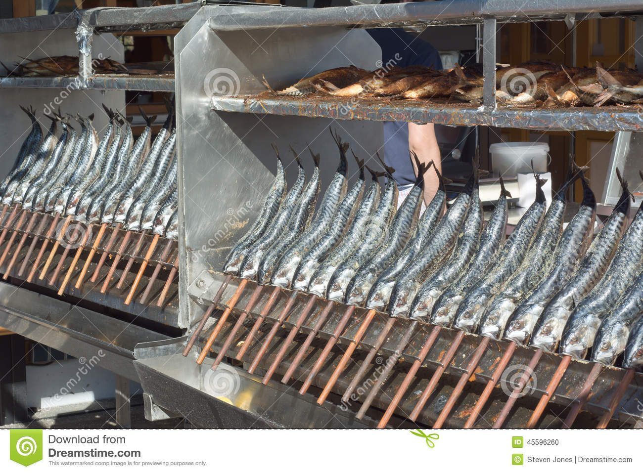 Grilled fish on a stick stock photo image 45596260 for Fish on a stick