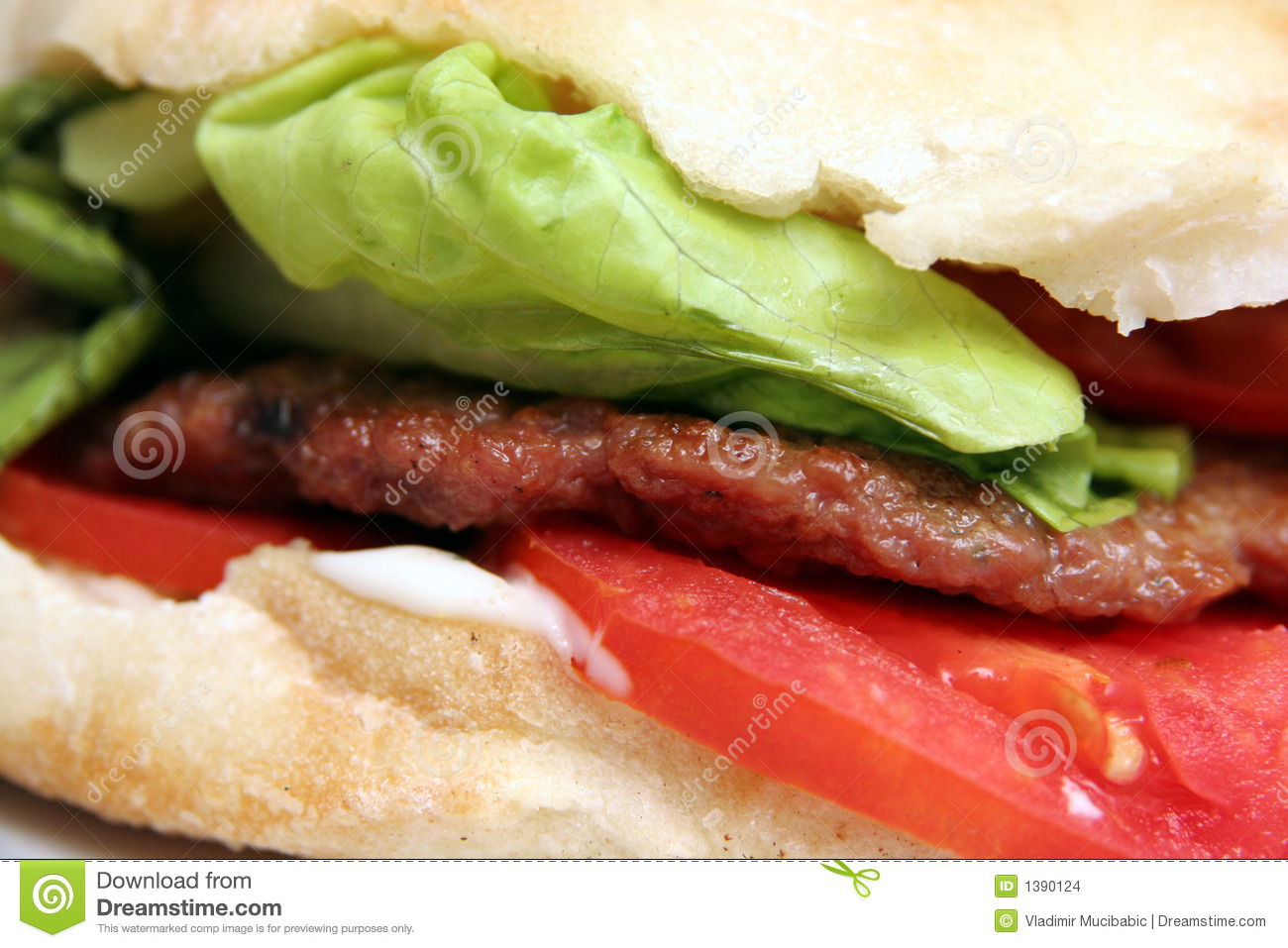 Stock Images  Grilled meat patty  hamburgerGrilled Hamburger Patty