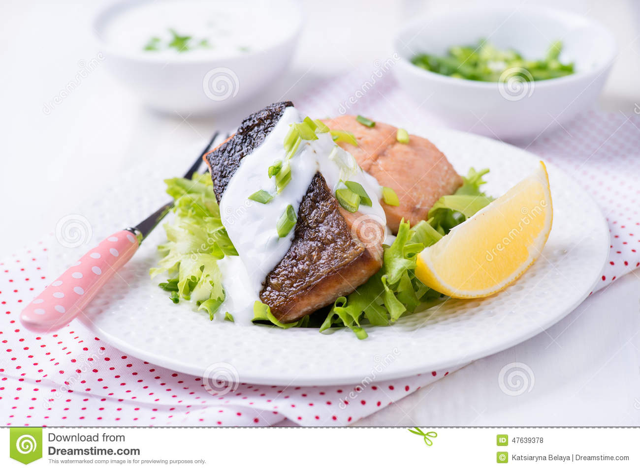 Grilled red fish fillet stock photo image 47639378 for Red fish fillet