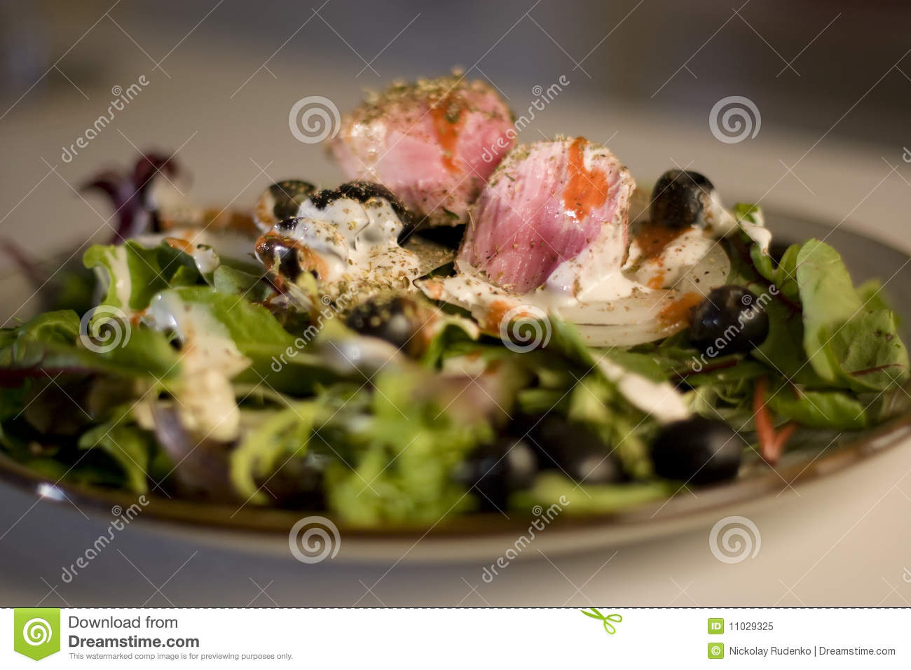 Grilled Tuna Salad Royalty Free Stock Photo - Image: 11029325