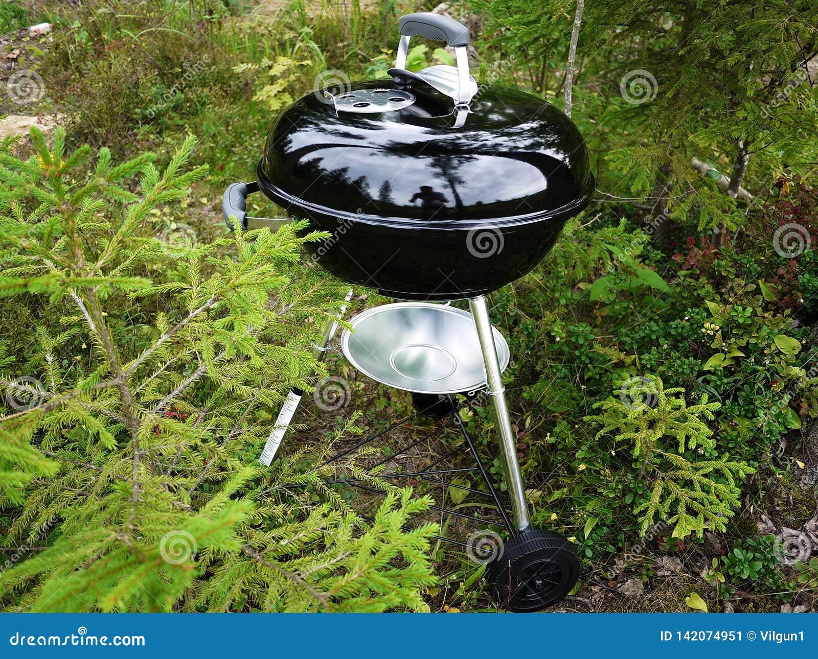 Grillfestgaller, biffar, kotletter, stekte fisk och grönsaker och annan mat