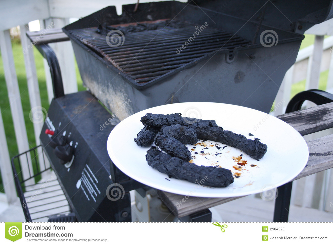 A barbecue gone wrong 7