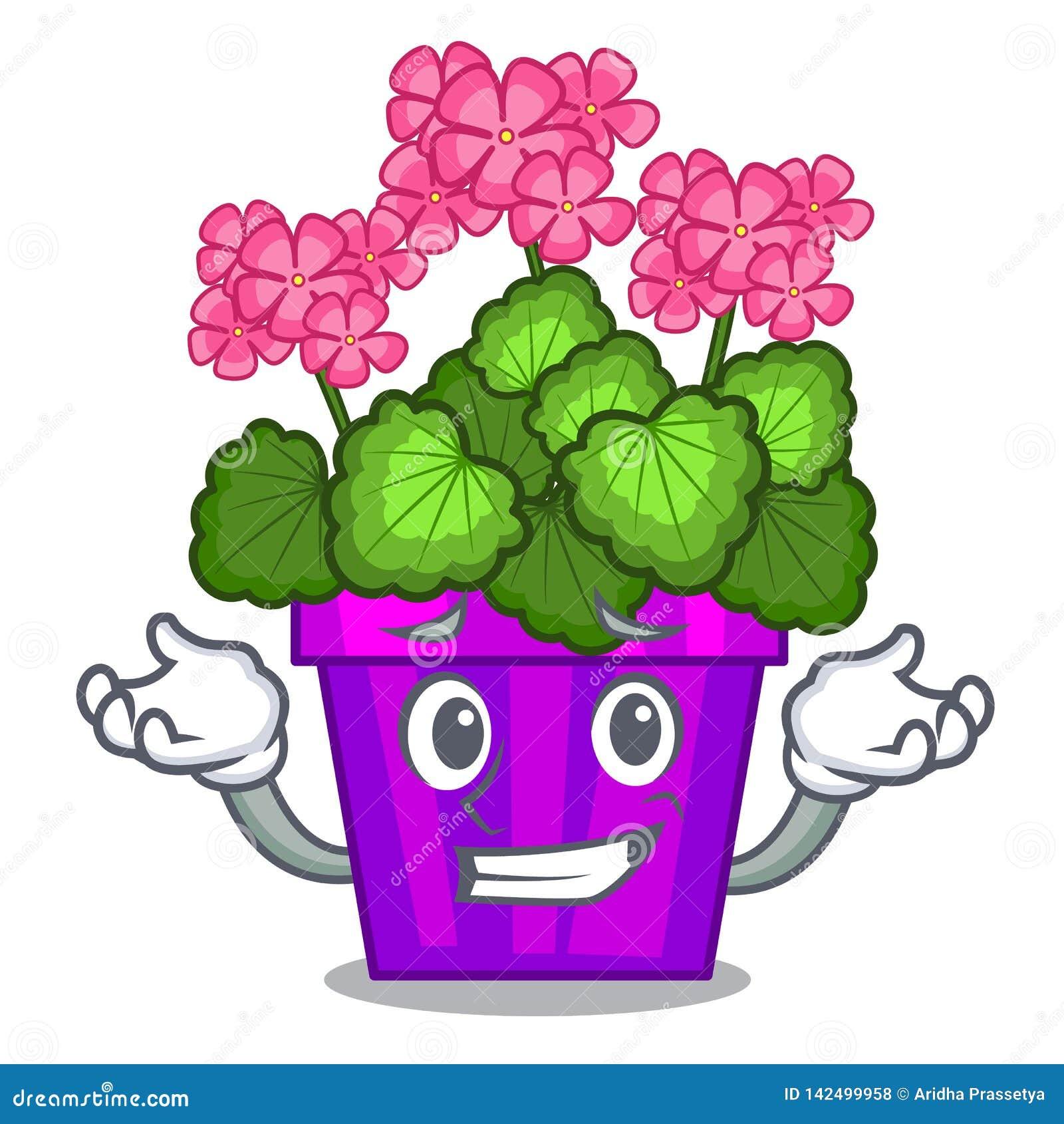 Grimaçant le géranium les fleurs collent la tige de caractère