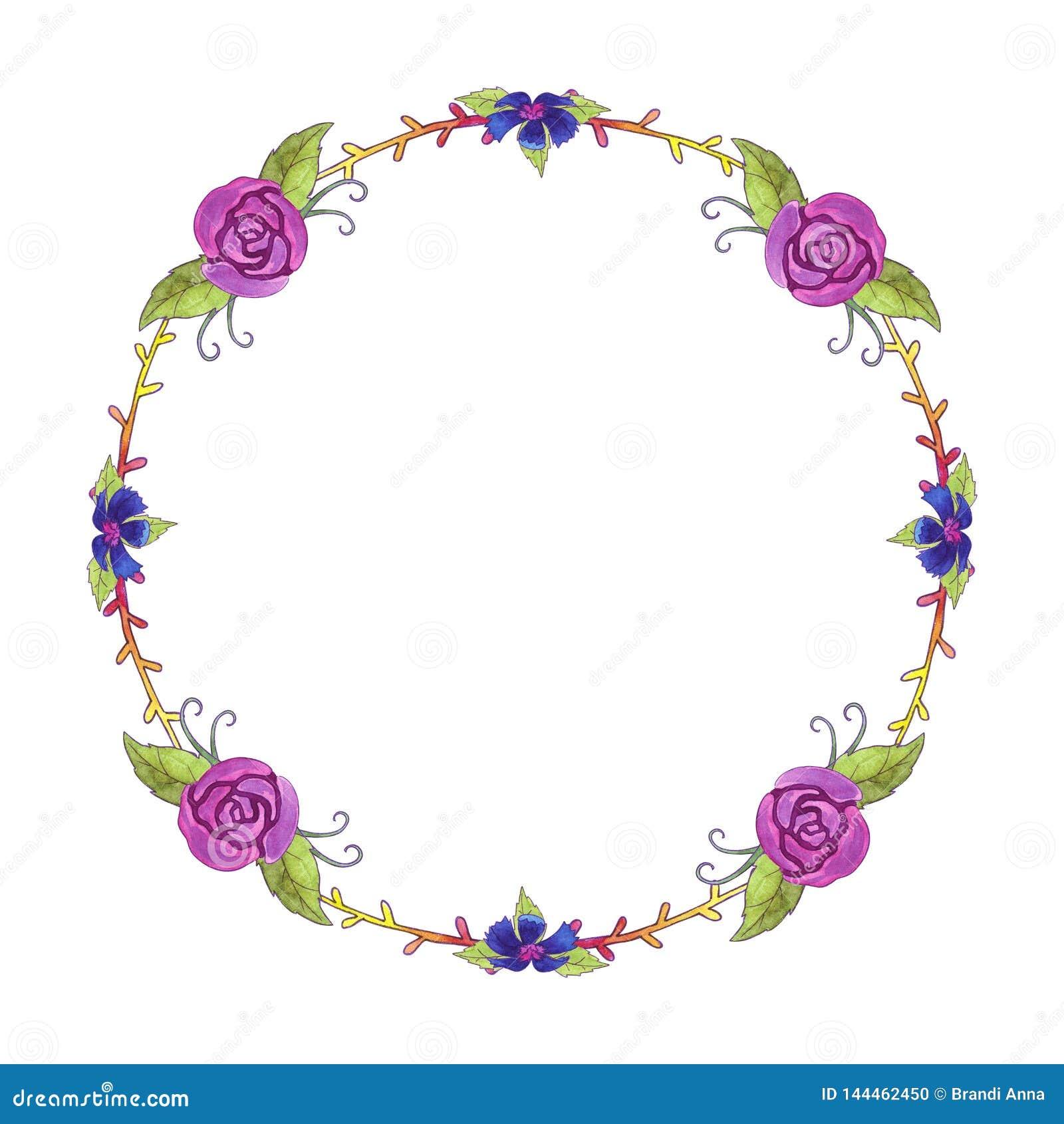 Grinalda do quadro das flores da aquarela primavera Rosas, cent?ureas e folhas