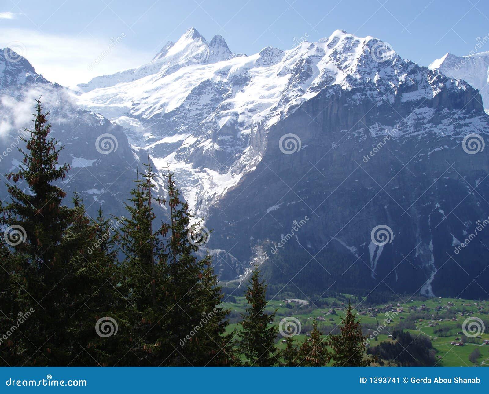 Grindelwald die Schweiz
