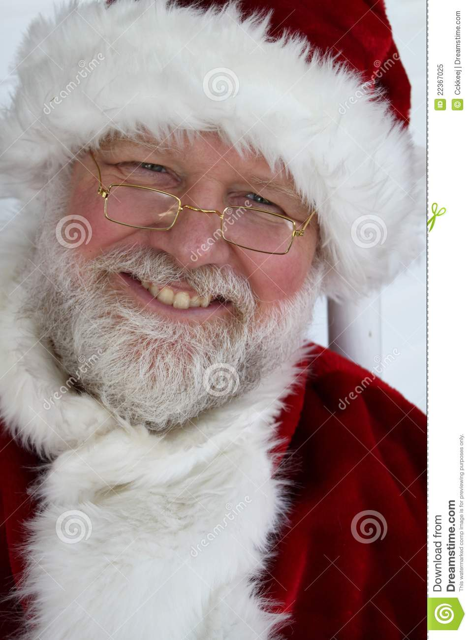 Grinning Santa Royalty Free Stock Photo Image 22367025