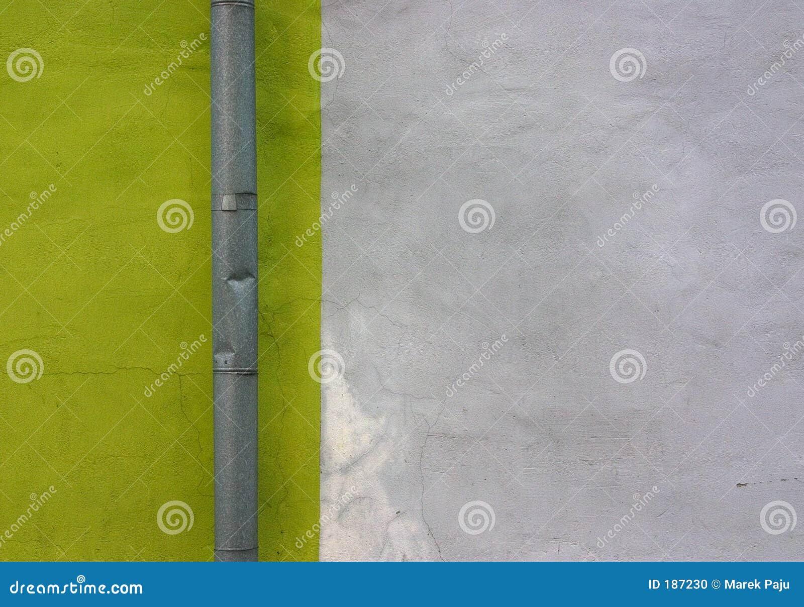 Gris-clair vert