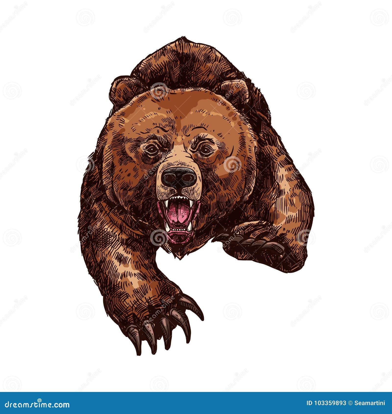 Grizzly die vectorschetsdier brullen