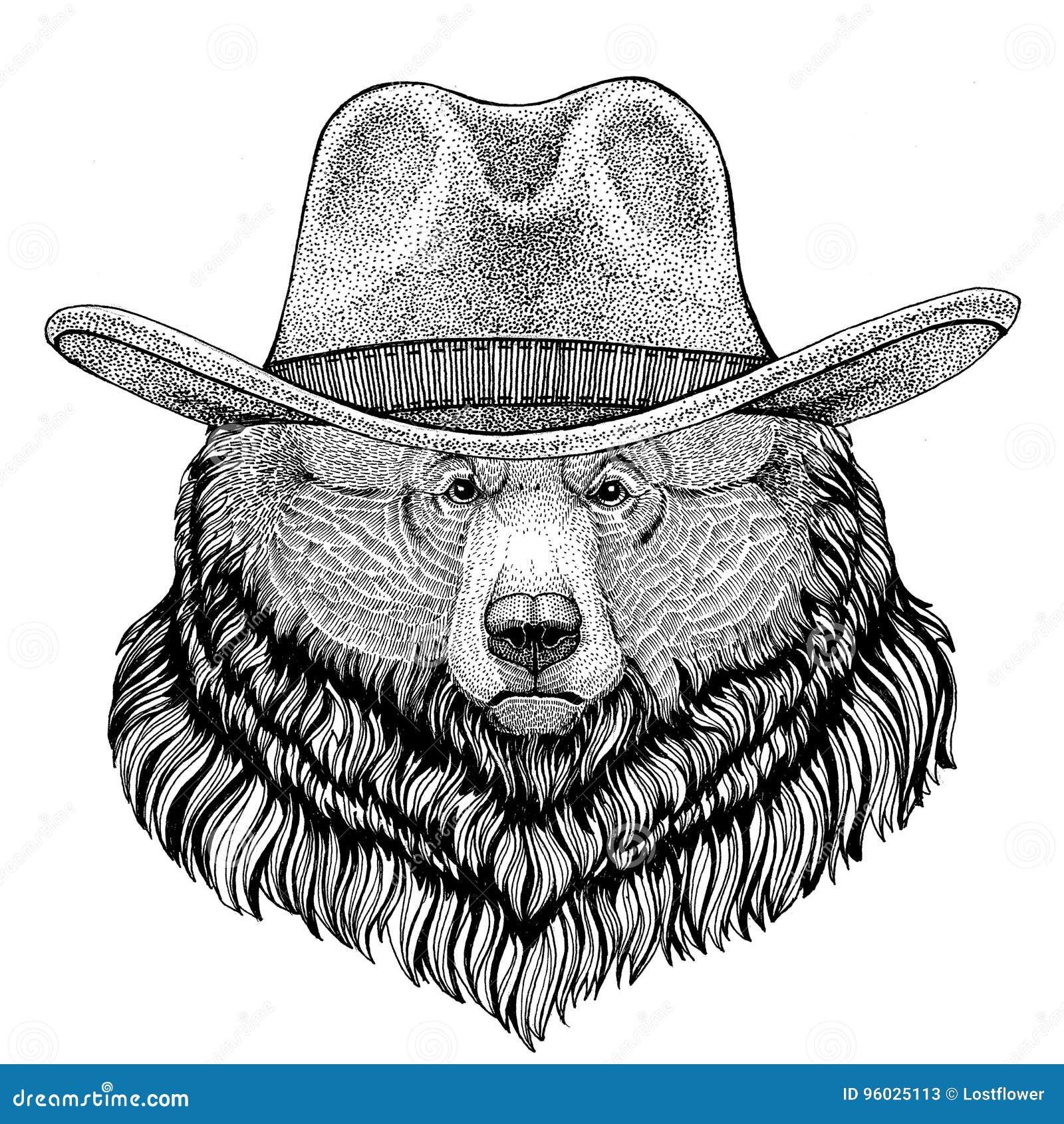 Grizzly niedźwiedzia Duży dziki niedźwiadkowy dzikie zwierzę jest ubranym kowbojski kapelusz Dziką zachodnią zwierzęcą Kowbojską
