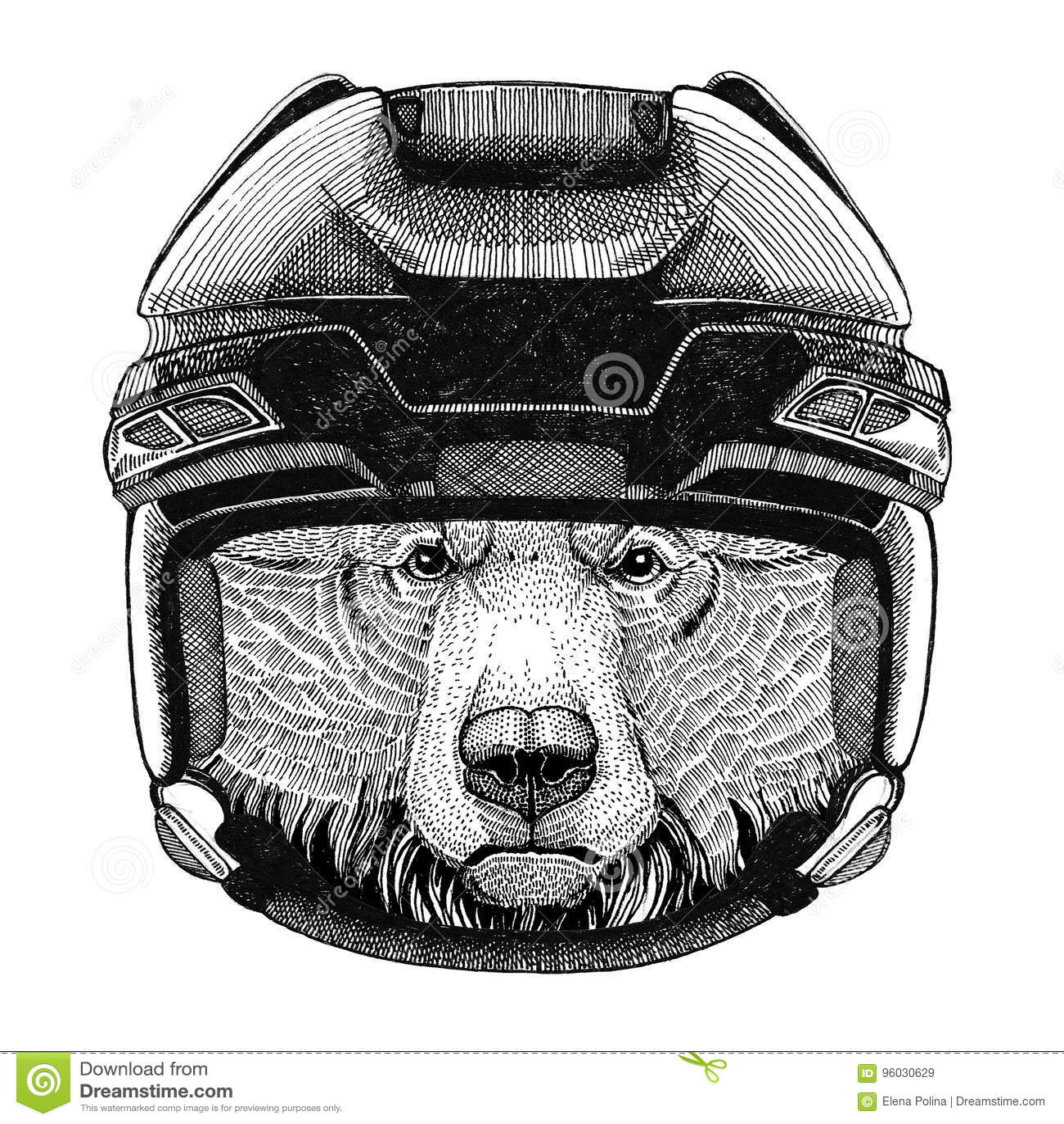 Grizzly niedźwiedzia wizerunku Duży dziki niedźwiadkowy Hokejowy dzikie zwierzę jest ubranym hokejowego hełma sporta zimy sporta