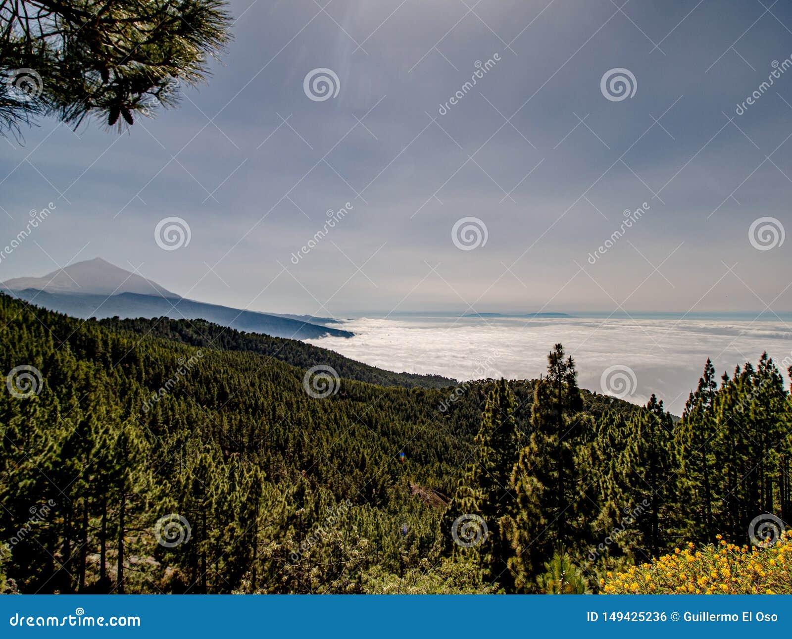 Großartige Ansicht über die Wolken zum Berg