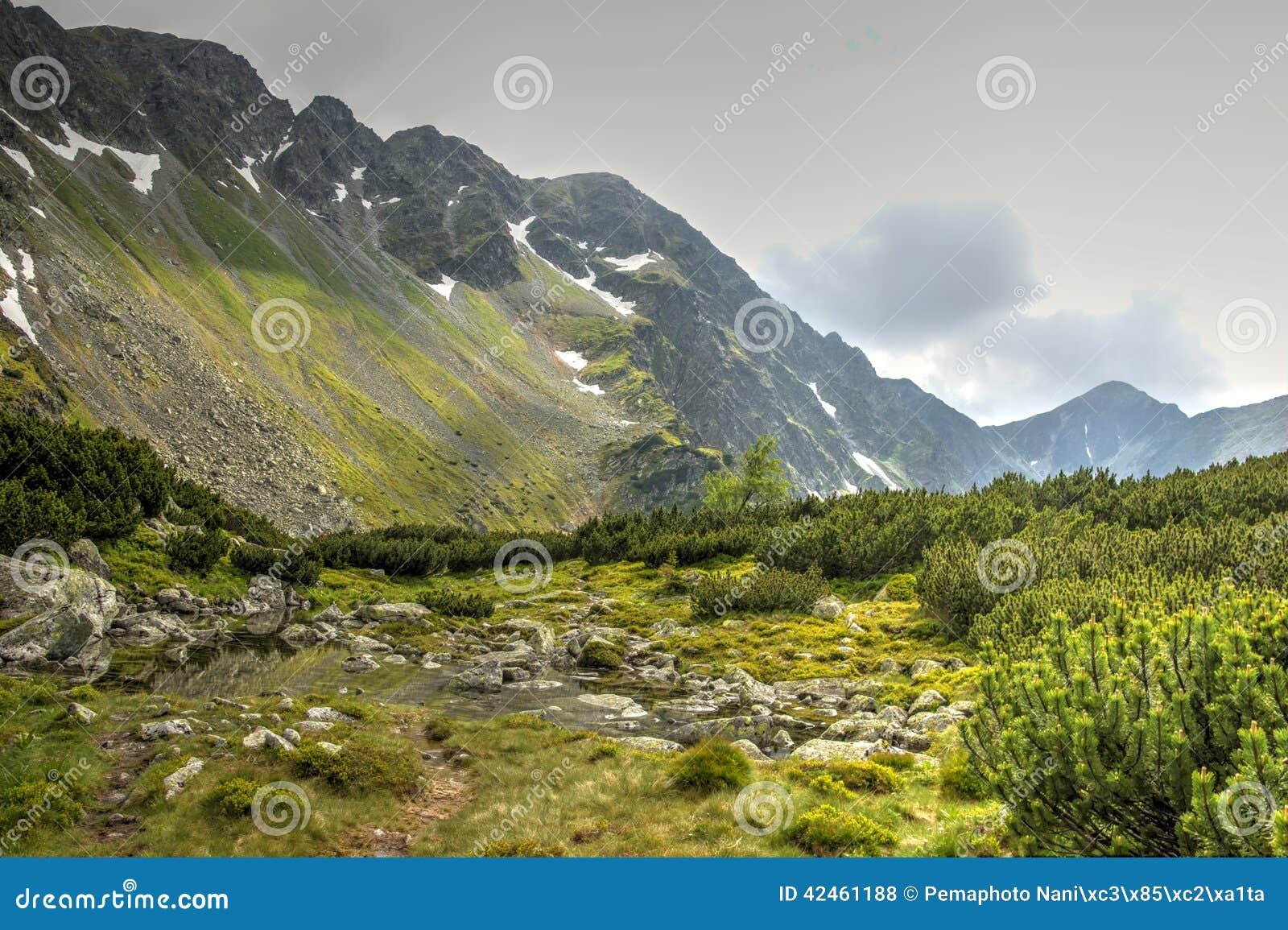 Große rauchige Berge Nationalpark, Tennessee, USA