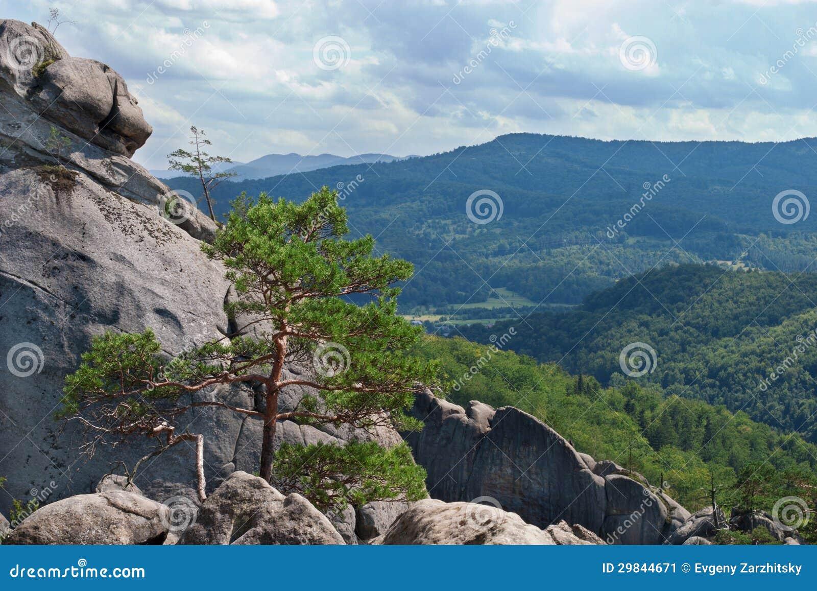 Steine in den Bergen