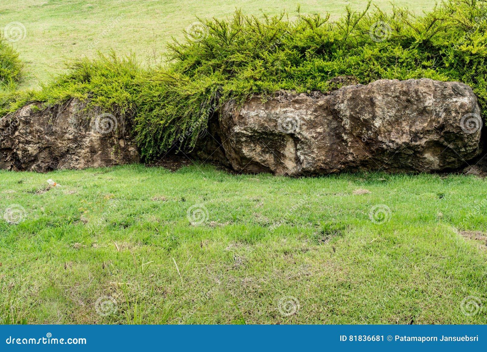 Grosse Steine Im Garten Stockbild Bild Von Nave Grun 81836681