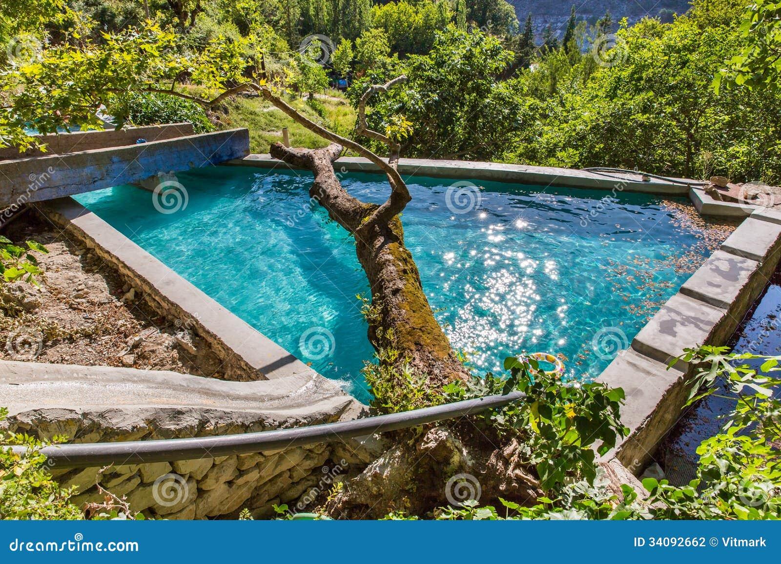 Gro er baum im swimmingpool im kleinen kretischen dorf in kreta insel griechenland - Swimmingpool klein ...