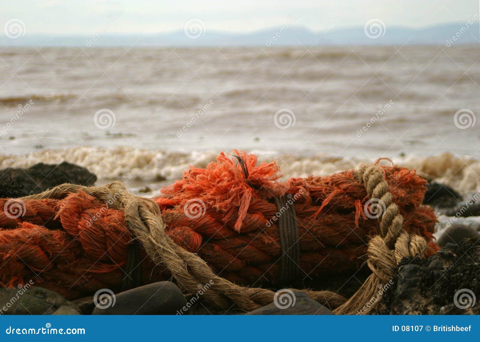 Großes altes Seil