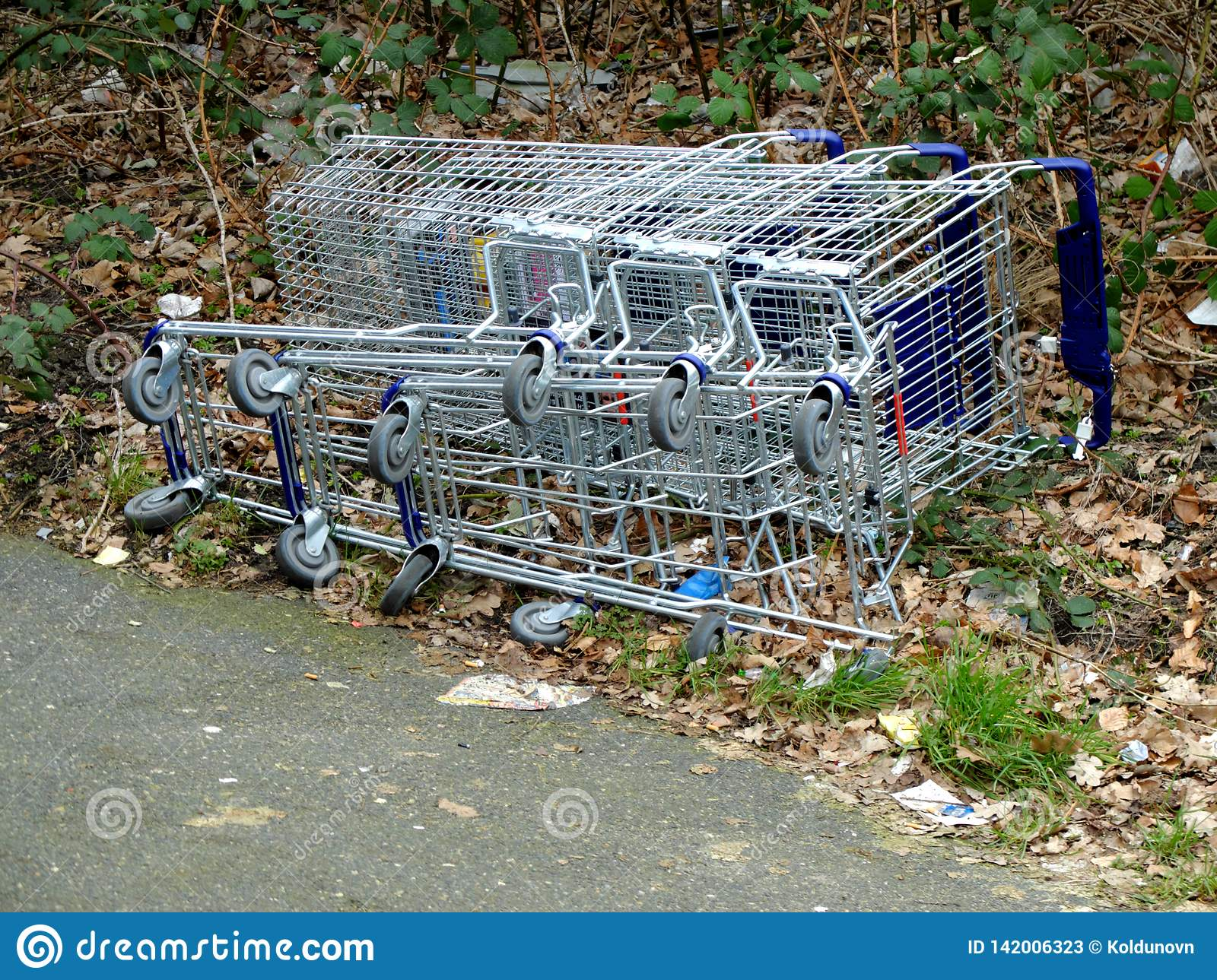 Grocery carts fallen and laying on the ground. The concept of empty supermarkets, drop in sales, close up of supermarket branches