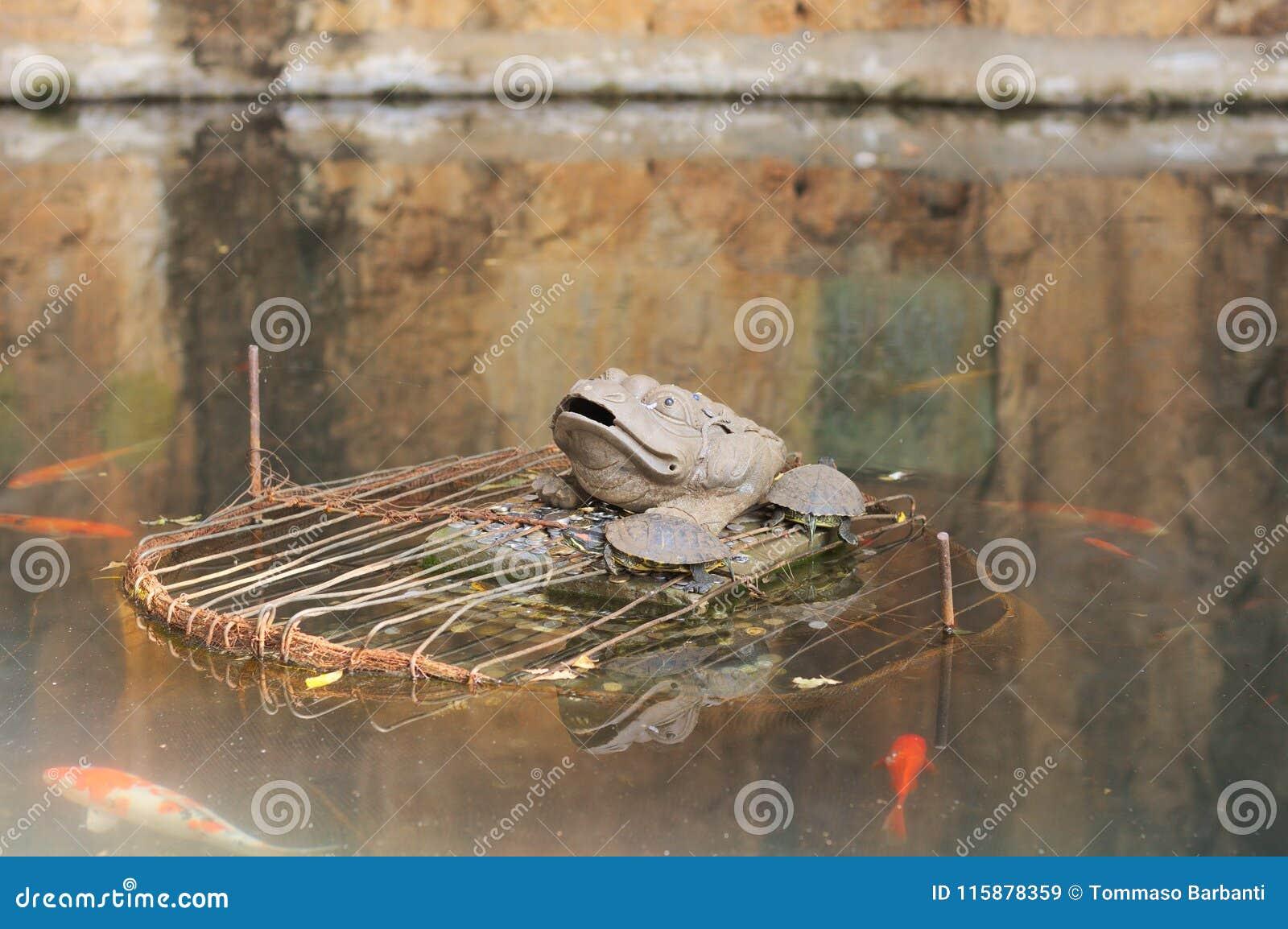 Groda, sköldpaddor och fiskar i sjön av den Yuantong templet