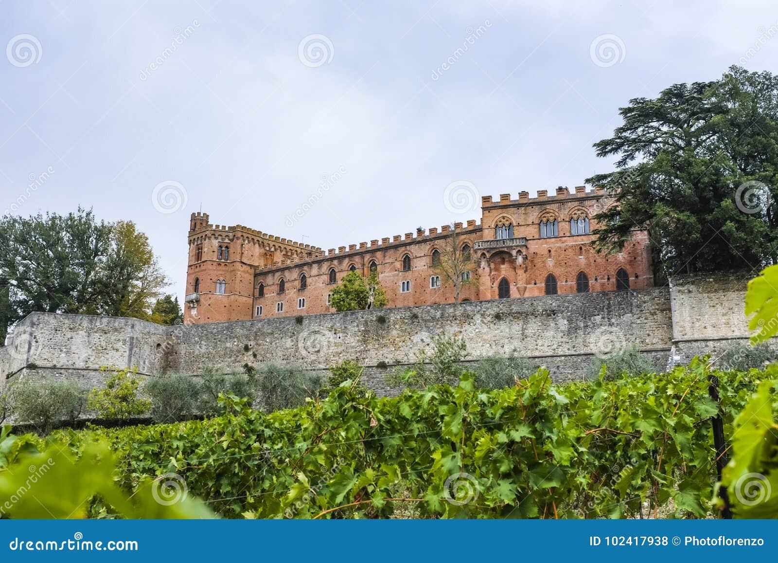 Grodowy Brolio i winnica w Tuscany w Włochy