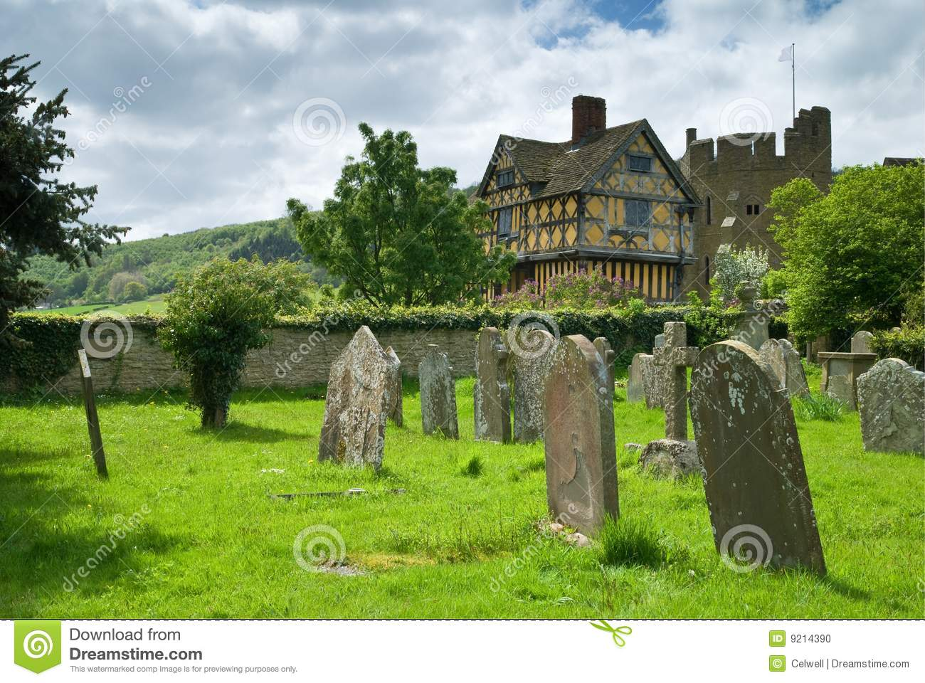 Grodowy stokesay