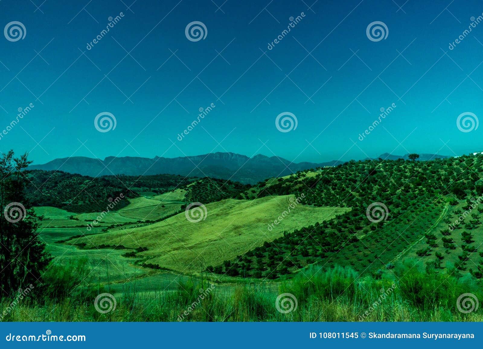 Groen, Bergen, Landbouwbedrijven en Gebieden op de rand van Ronda