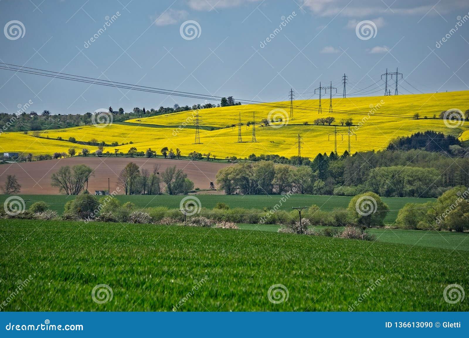 Groen en geel gebieden en machtsnet