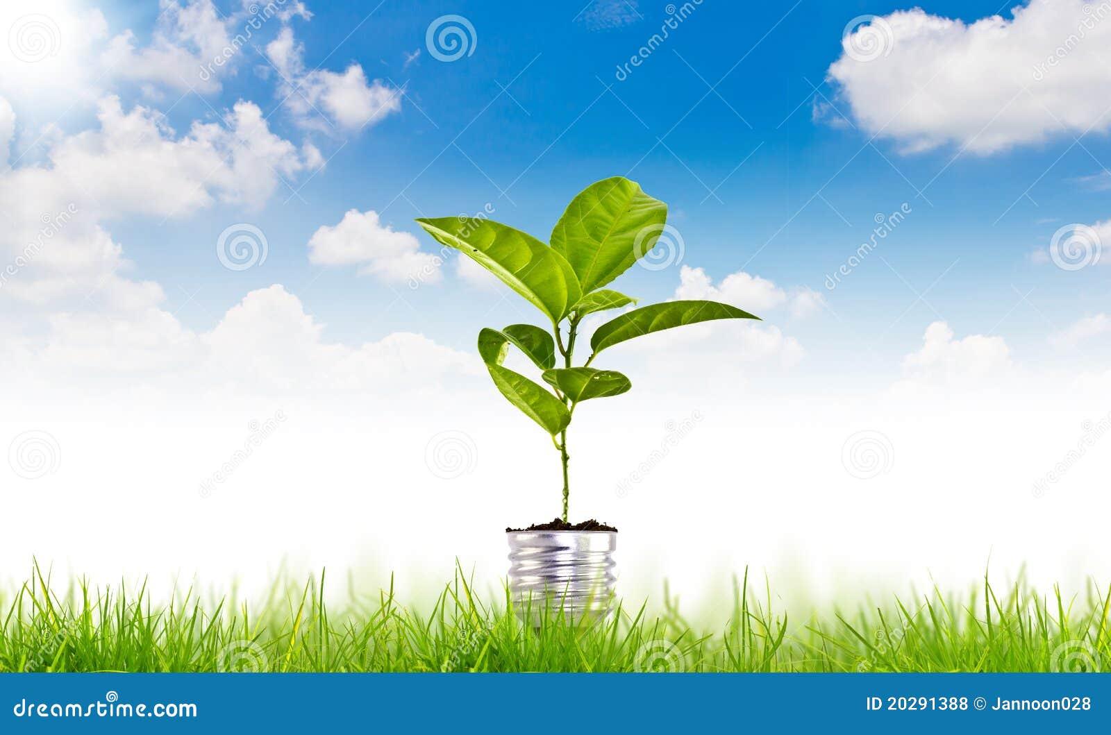 Groen energiesymbool over blauwe hemel