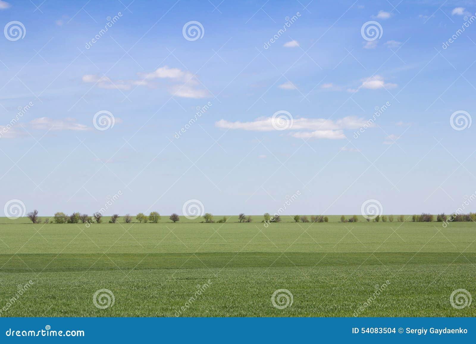 Groen gebied en blauwe hemel met lichte wolken