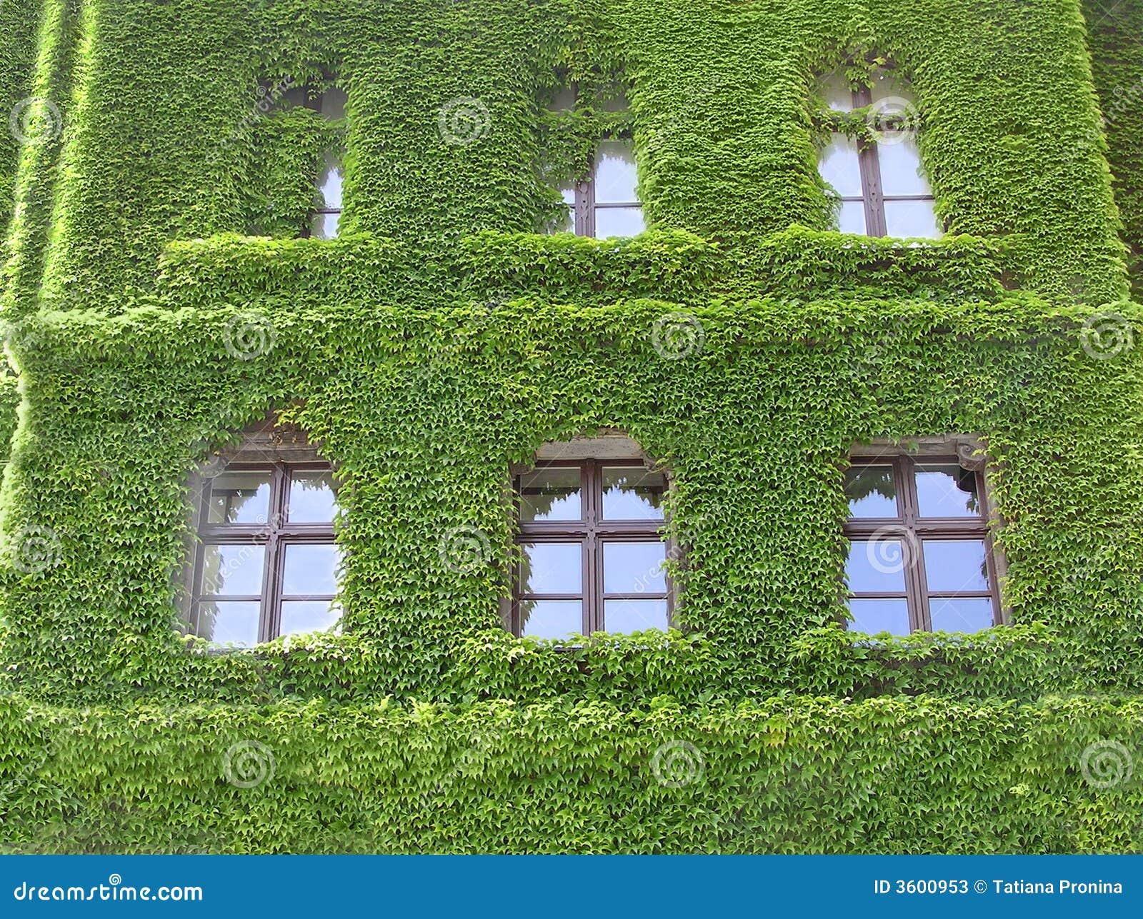 Groen huis stock afbeelding afbeelding bestaande uit verdraaid 3600953 - Groen huis model ...