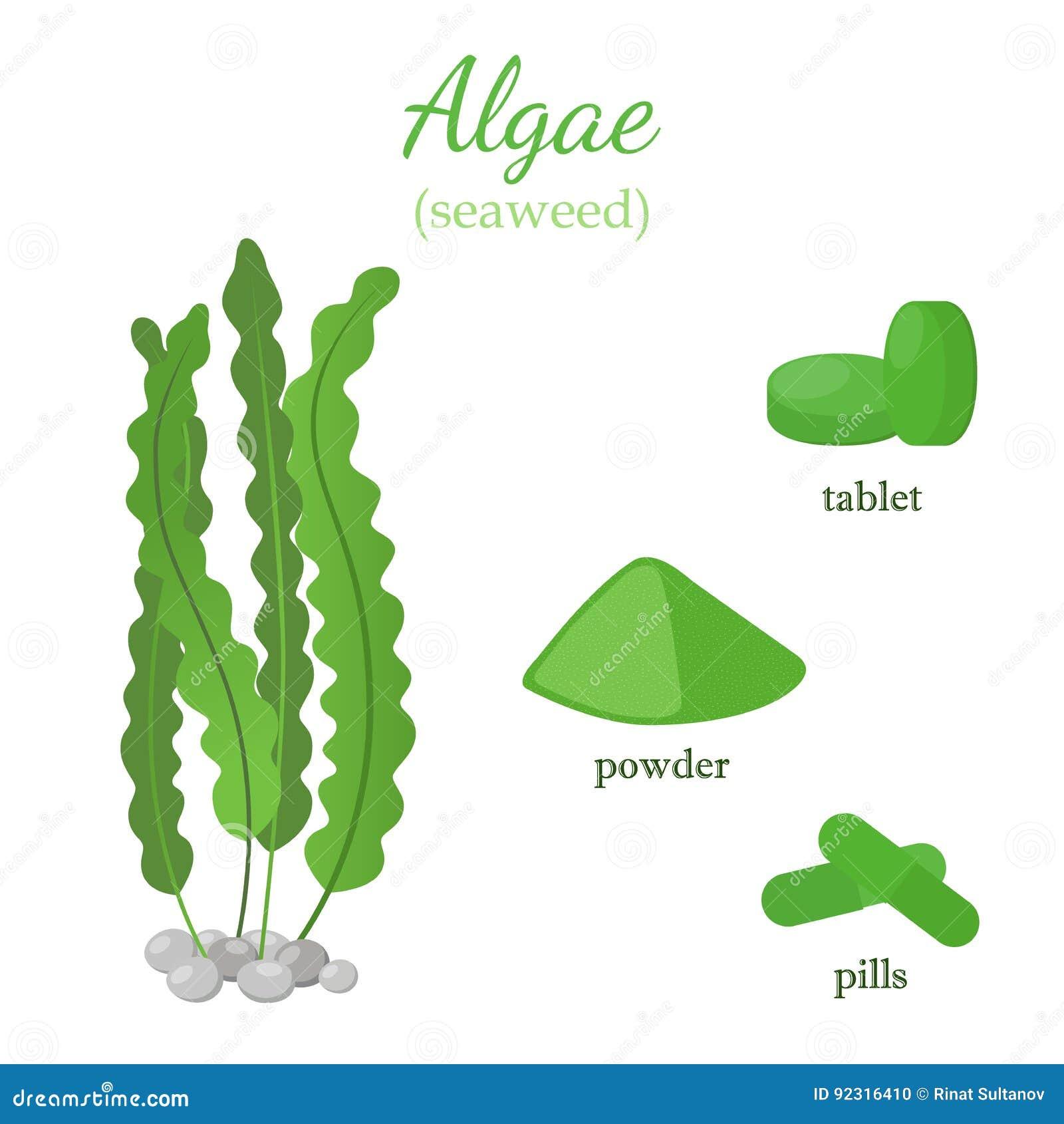 algen gezond