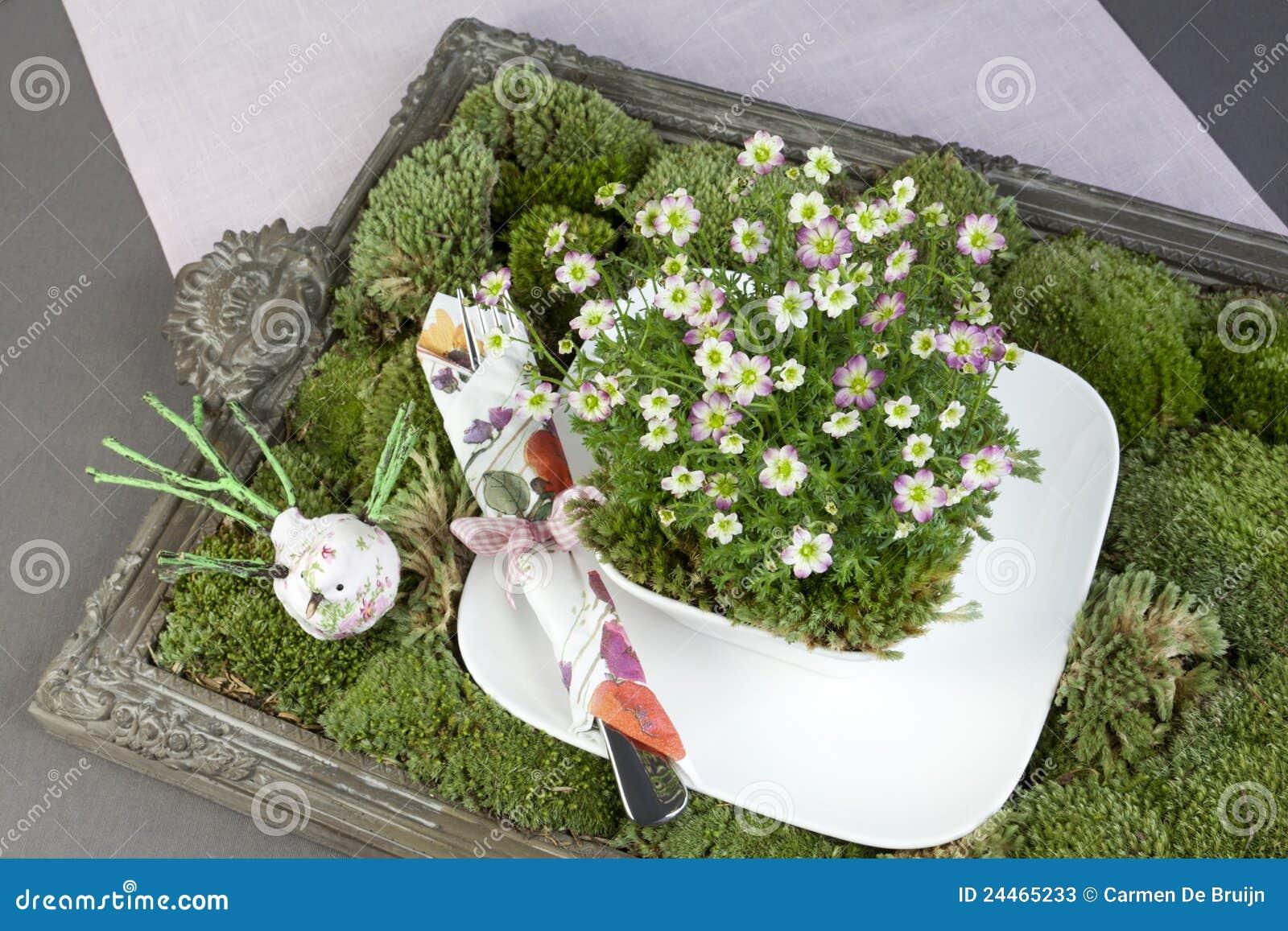 groene decoratie met mos bloemen en vaatwerk stock afbeelding afbeelding bestaande uit. Black Bedroom Furniture Sets. Home Design Ideas
