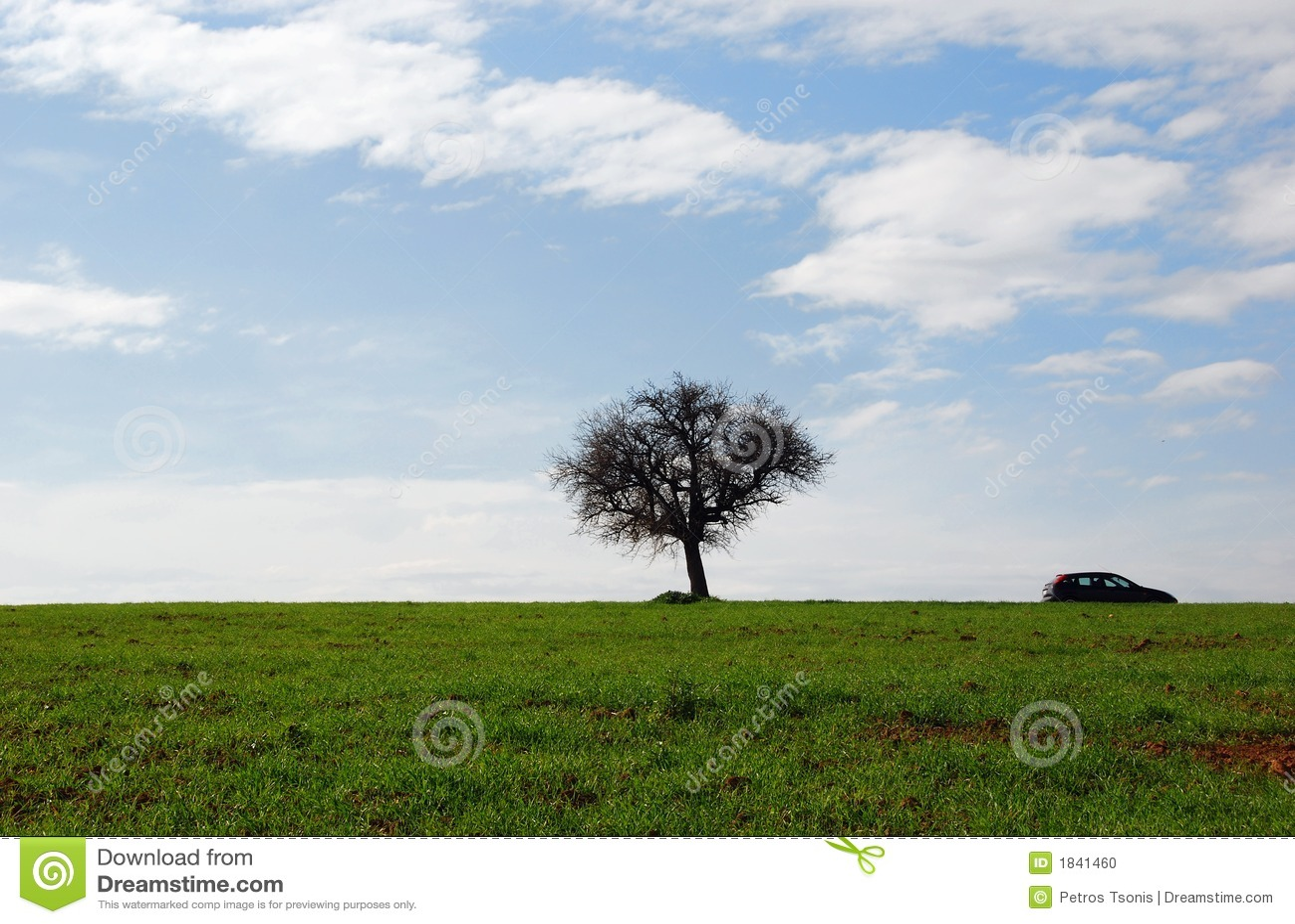 Groene gebieden, blauwe hemel, eenzame boom