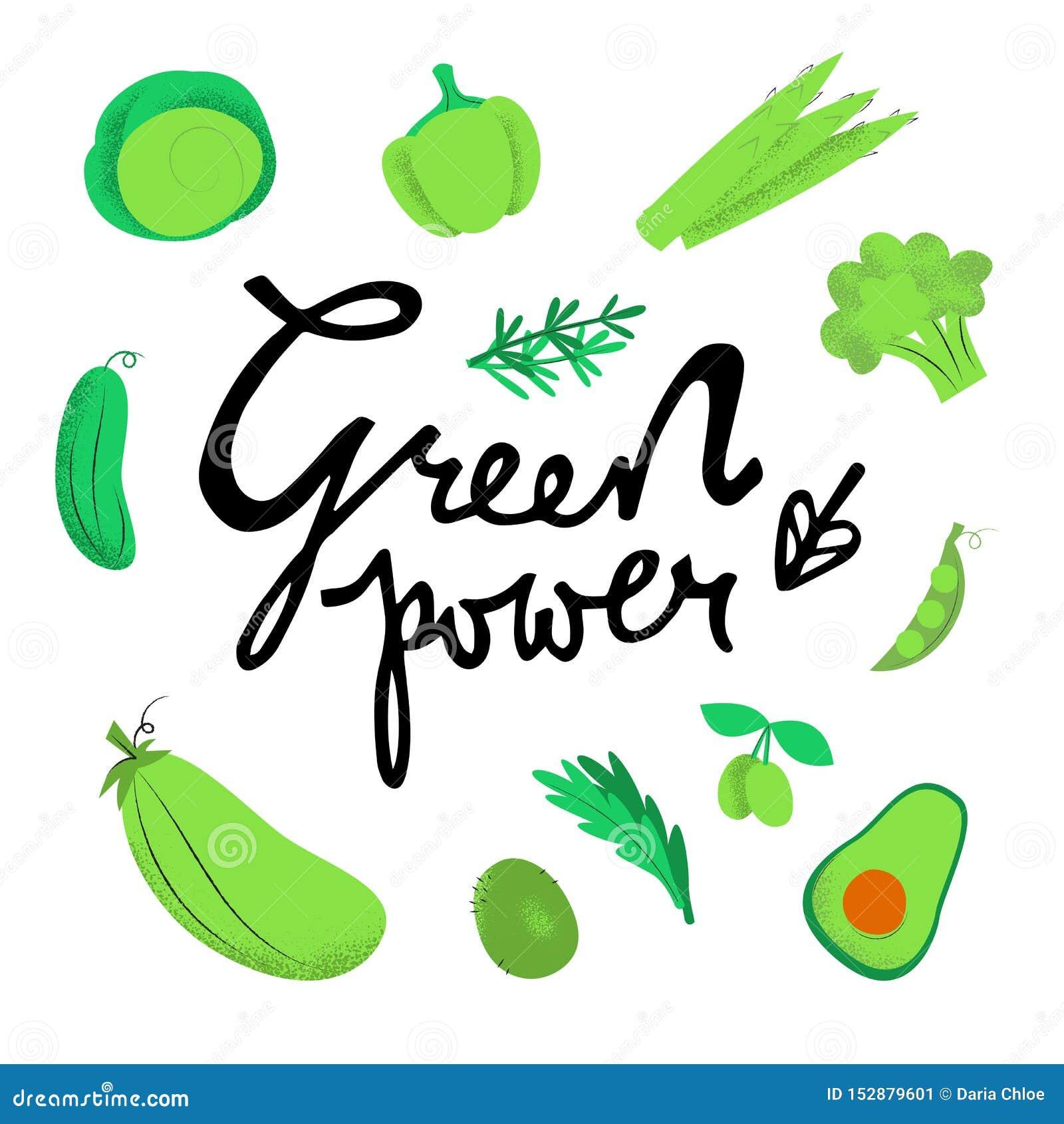 Groene machts vector schetsmatige illustratie