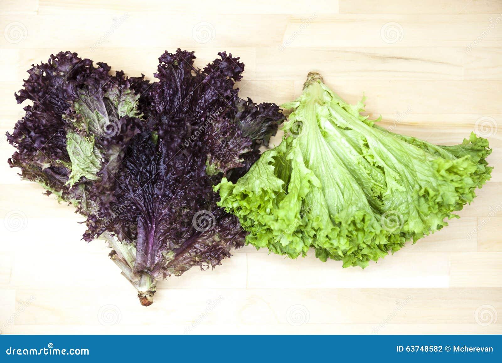Groene nieuwe lollo rossoand en sla van salade in een pot op een ...