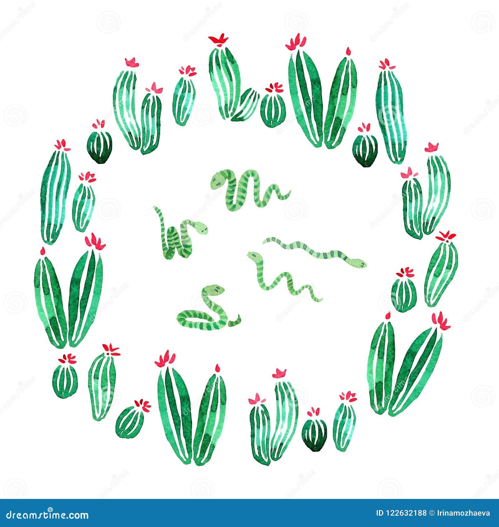 Groene slangen in een de waterverfillustratie van de cactussencirkel op wit