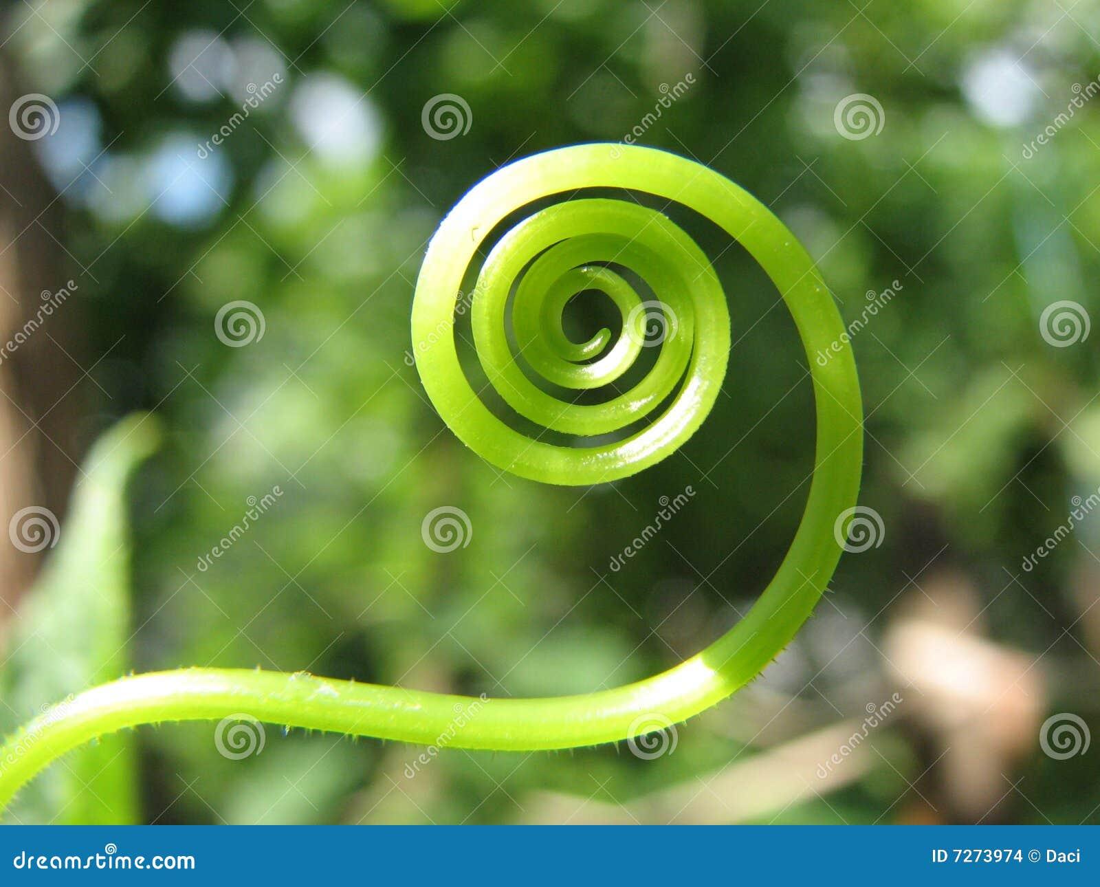 Groene Spiraal