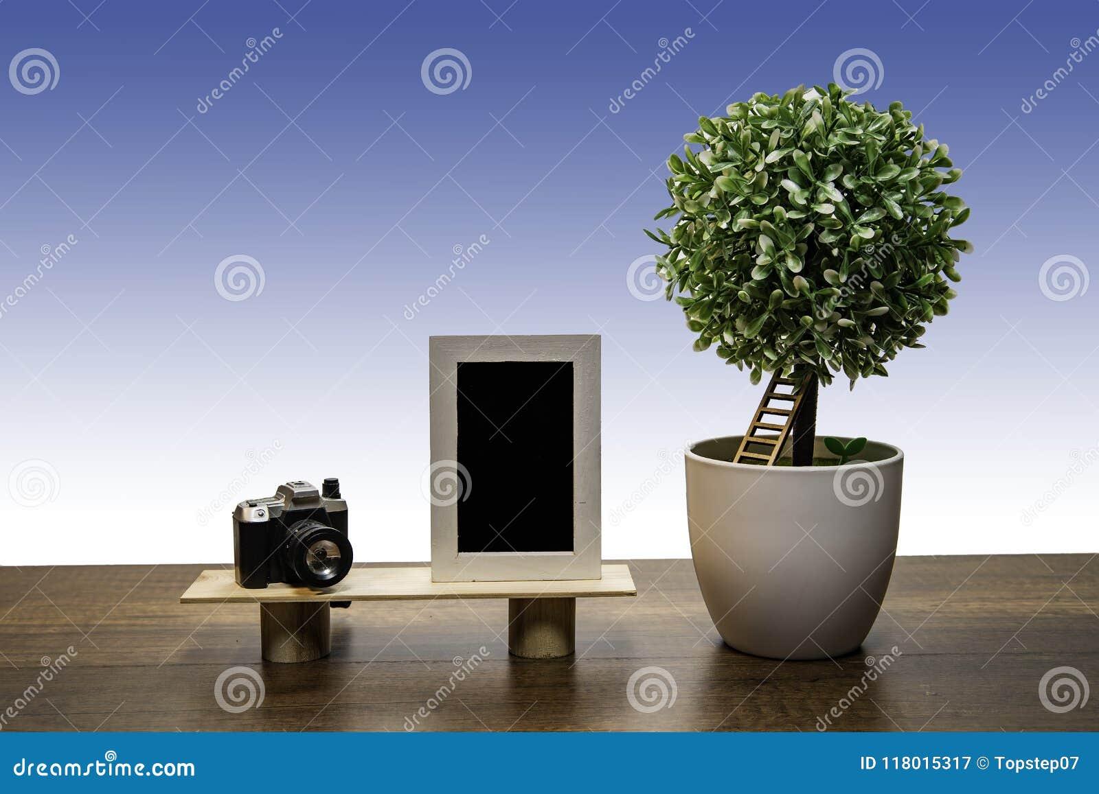 Groene struikboom in witte bloempot met Fotokader en Camera