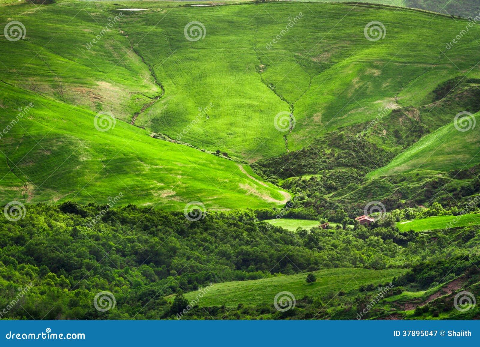 Groene vallei tussen de heuvels in Toscanië