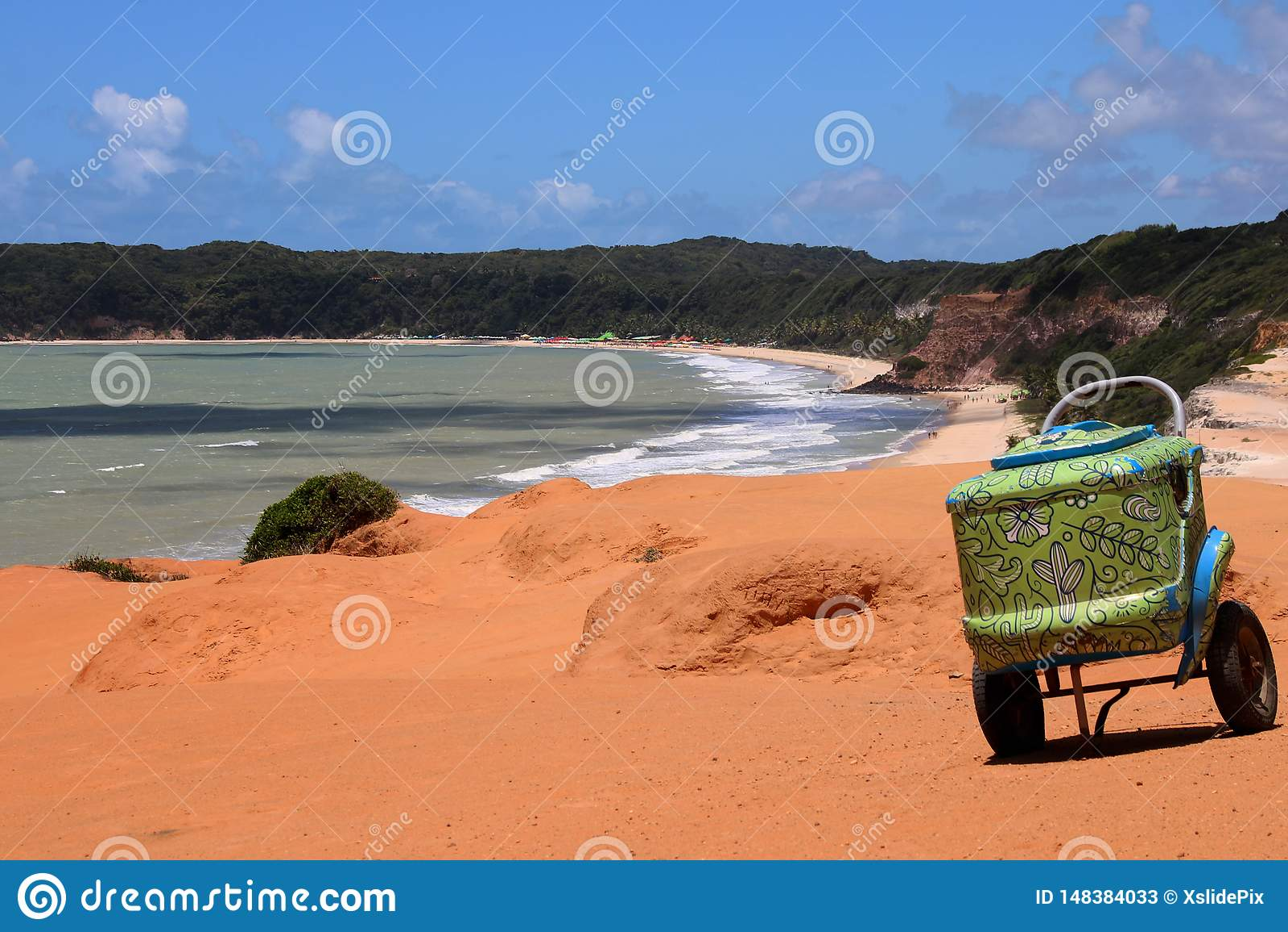 Groene verfraaide Koeler in Brazilië
