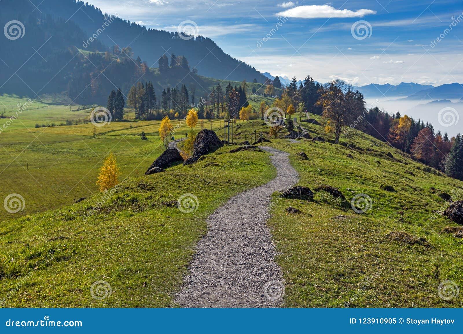 Groene weiden boven Meer Luzerne, dichtbij onderstel Rigi, Alpen, Zwitserland