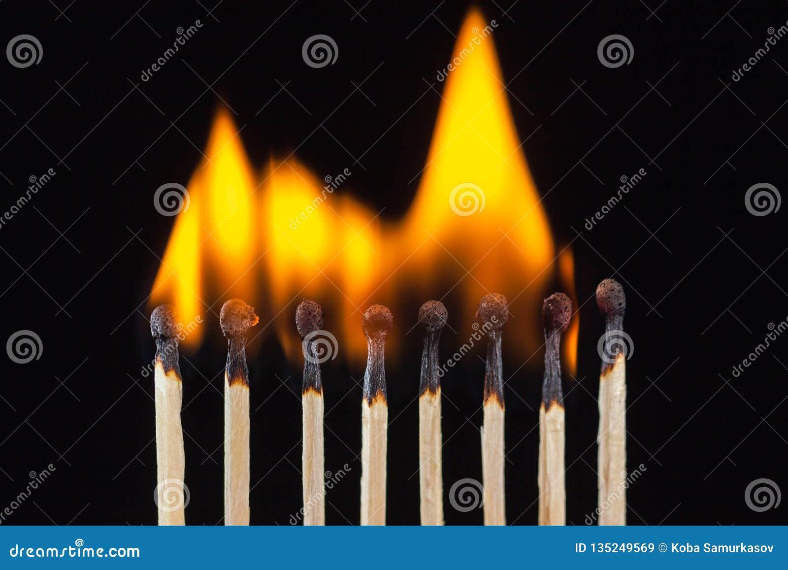 Groep brandwond en onverbrande die gelijken, op zwarte achtergrond wordt geïsoleerd