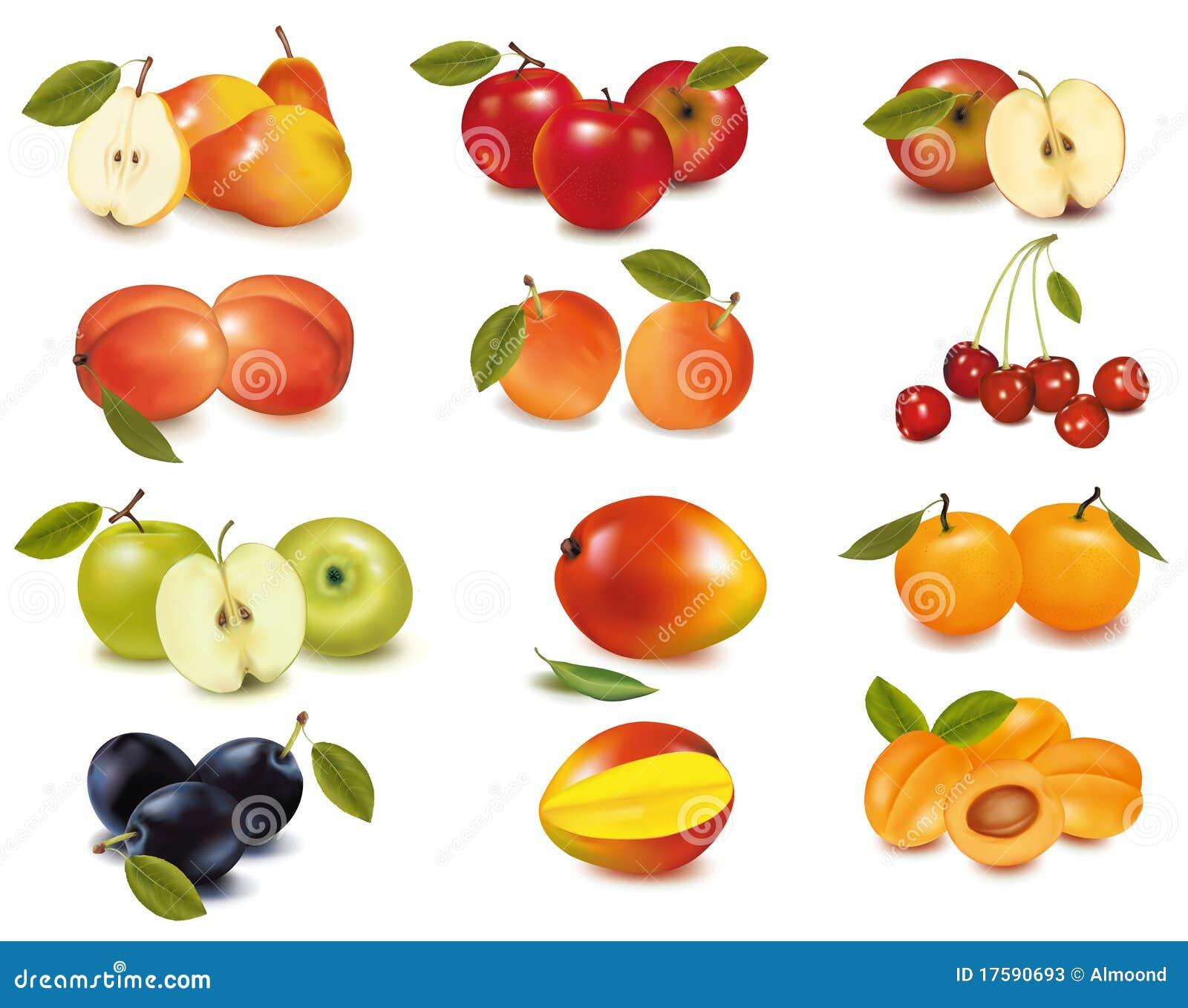 alle fruitsoorten met foto